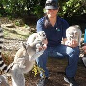 OCS Limited Celebrate Thank Your Cleaner Day with Lemurs